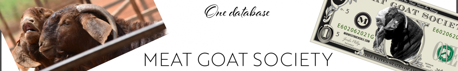 Meat Goat Society